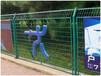安平航皇绿色环保体育场围栏绿色校园围网价格