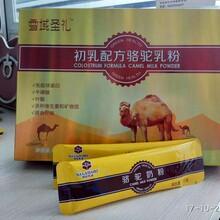 中老年益生菌骆驼奶粉招商驼奶粉代加工厂家会销骆驼奶粉图片
