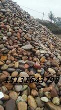 永順直銷鋪路鵝卵石變壓器河卵石批發精品雨花石規格圖片