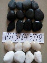 天津机制白色砾石天然黑色鹅卵石加工图片