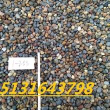 山东哪里供应0.5-2厘米天然鹅卵石滤料。图片