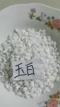白色胶粘石子多少钱白色洗米石供应商白色石米批发厂家图片