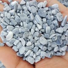 陕西永顺直销纯天然鹅卵石园艺用的白色石子图片