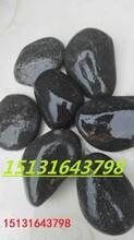 濮阳精品雨花石出售永顺黑色鹅卵石黑色雨花石价格图片