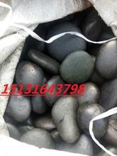 供应黑色浅抛鹅卵石河北鹅卵石厂家雨花石图片