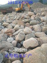 天津1-2米大石头价格驳岸石50厘米以上天然大鹅卵石批发图片