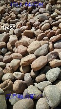 邯郸出售大块砾石永顺铺路鹅卵石厂家图片