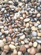 郸现货供应鹅卵石5-8厘米永顺河卵石厂家图片