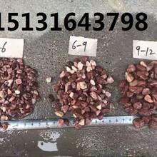 聊城鸡血红石米出售红色洗米石批发鸡血红胶粘石厂家图片