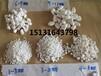 蘭州白色洗米石永順白色石子供應商