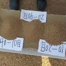 大同烘干砂永順天然河沙量大從優圖片