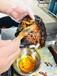 鸭霸王是湖南常德着名的小吃
