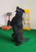 宠物训练表演犬工作犬护卫犬斗犬等专业训犬