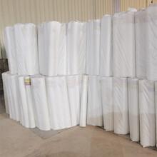 廣西玻璃纖維網格布工地用白色網格布廠家圖片