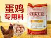 宝积中草药预混料蛋鸡预混料厂家直销批发提高产蛋率