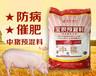 猪预混料中猪用中草药保健预混料增肥促长肉质好