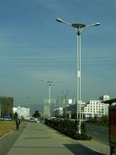德阳太阳能路灯厂家