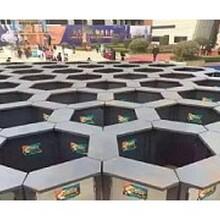 供应哪里有蜂巢迷宫租赁蜂巢迷宫出租出售图片