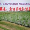 華龍土工膜價格魚池防滲膜廠家銷售