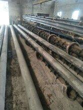 各种型号电杆预应力水泥杆混凝土电杆电线杆图片