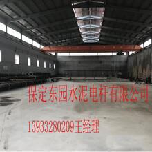 兴安盟φ400×18m水泥杆正规大厂不受环保影响图片