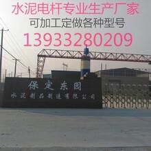 克什克腾旗钢纤维整根电杆正规大厂不受环保影响图片