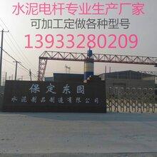 河北水泥杆钢筋混凝土电杆190-12米-M级-G非预应力图片