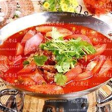 淄博市番茄火锅底料批发供应商辣火老灶
