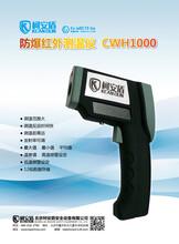 可多组数据存储的防爆红外测温仪CWH1000图片