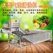 贛云廠家直銷氣泡清洗蔬菜機子大型商用清洗果蔬設備
