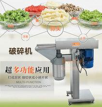 厂家直销大型自动破碎机商用破碎大蒜土豆辣椒设备图片
