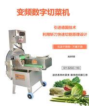 大型自動切割豆角蔥花機子商用數字變頻切韭菜辣椒設備圖片