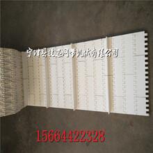 山东塑料网带PP网带输送线塑料链板输送带及配套链轮生产厂家