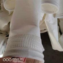 除尘布袋/口径157除尘滤袋供应/华英环保图片