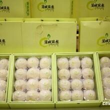 蒲城酥梨博物館早酥梨價格代辦電話圖片
