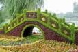 景观小品五色草造型植物雕塑供应销售