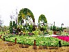 五色草植物雕塑立体花坛景观小品