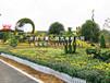 五色草造型五色草雕塑立体花坛景观小品设计找景心园艺