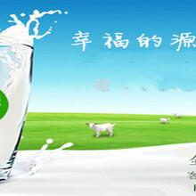 会销初乳配方羊奶粉中老年配方羊奶粉会销羊初乳福唯康初乳配方羊奶粉会销羊奶粉中老年羊奶粉