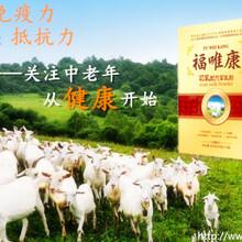 羊初乳羊奶粉,厂家供应福唯康初乳配方羊奶粉盒装300g,会销羊奶粉