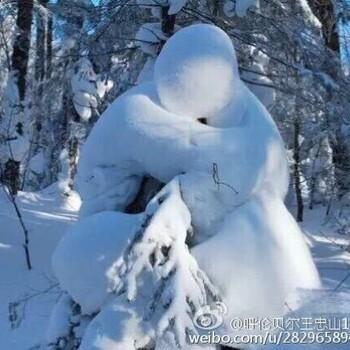 极限草原户外带你走进冰城哈尔滨穿越雪乡长白山图片1