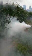 福临畜牧养猪设备喷雾式消毒器图片