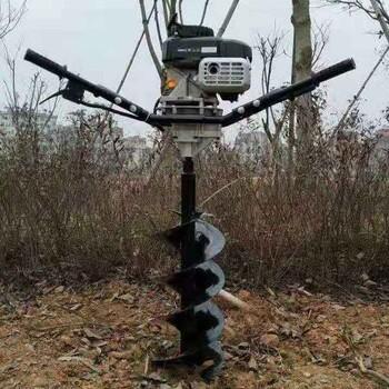 济宁市小型汽油机地钻化油器配件栽树打孔机