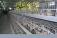 供应各种养殖笼子——鸡笼