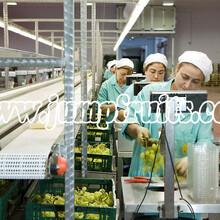 供应黄桃梨苹果葡萄草莓樱桃黄瓜玉米西红柿等果蔬玻璃罐铁罐生产线设备图片