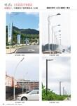济宁邹城小区景观灯供应,邹城景观灯,邹城小区景观灯供应厂家图片