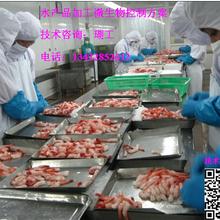 即食鱼片如何有效预防致病菌感染?图片