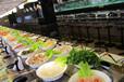 三亚行业优质的寿司传送带设备