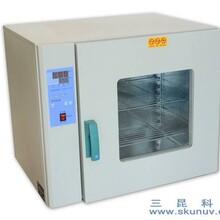 SK系列数显电热鼓风干燥箱,可定制(带定时)