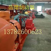电力液压防爆块式制动器、隔爆型电力液压制动器、防爆制动器型号YWZ5-400/121图片